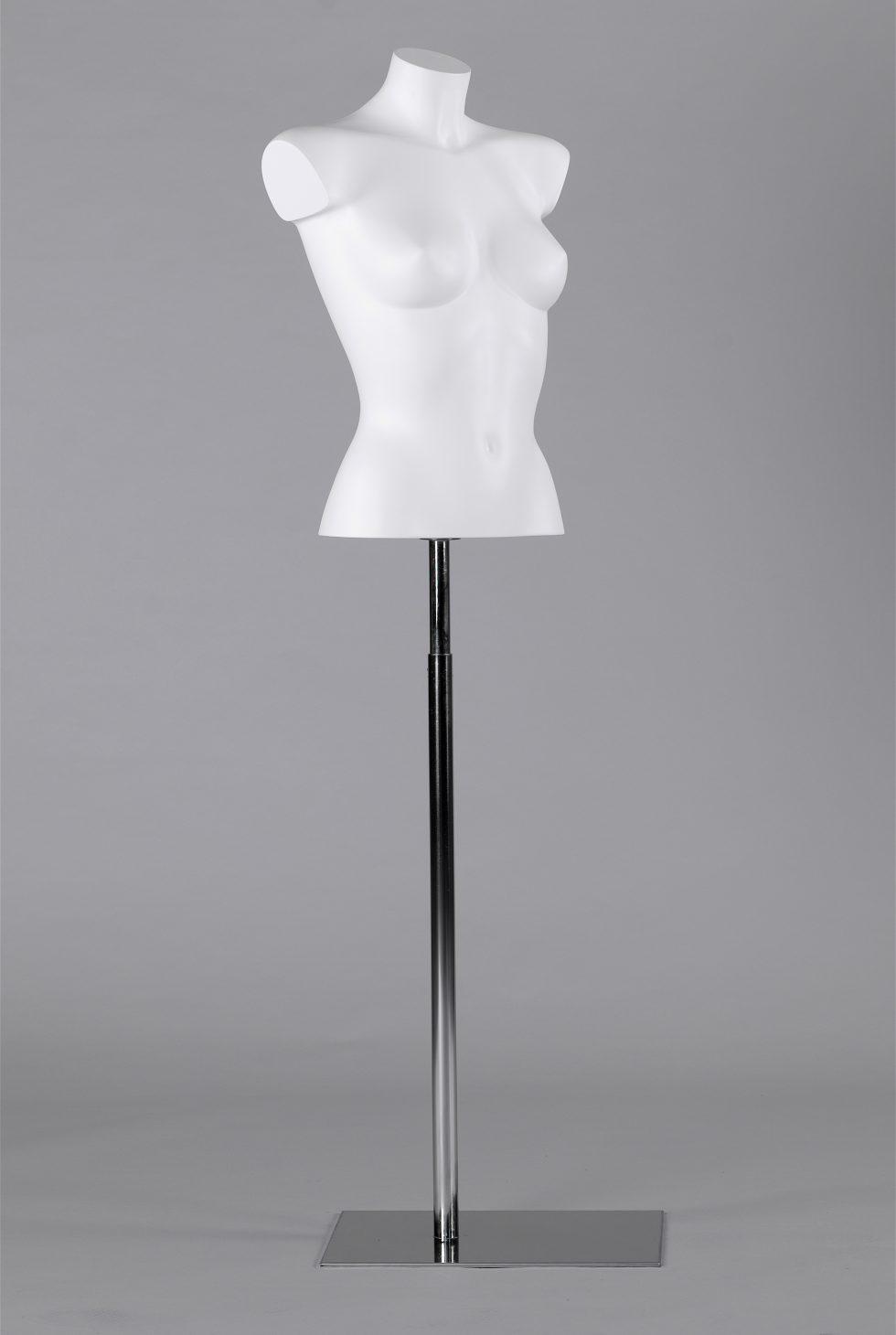 mezzo busto vetrina donna coppa B